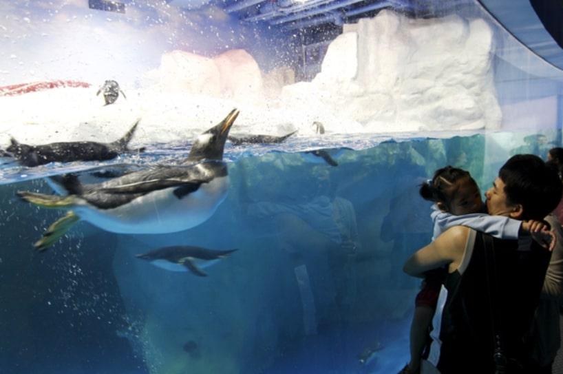 Photos Aquarium